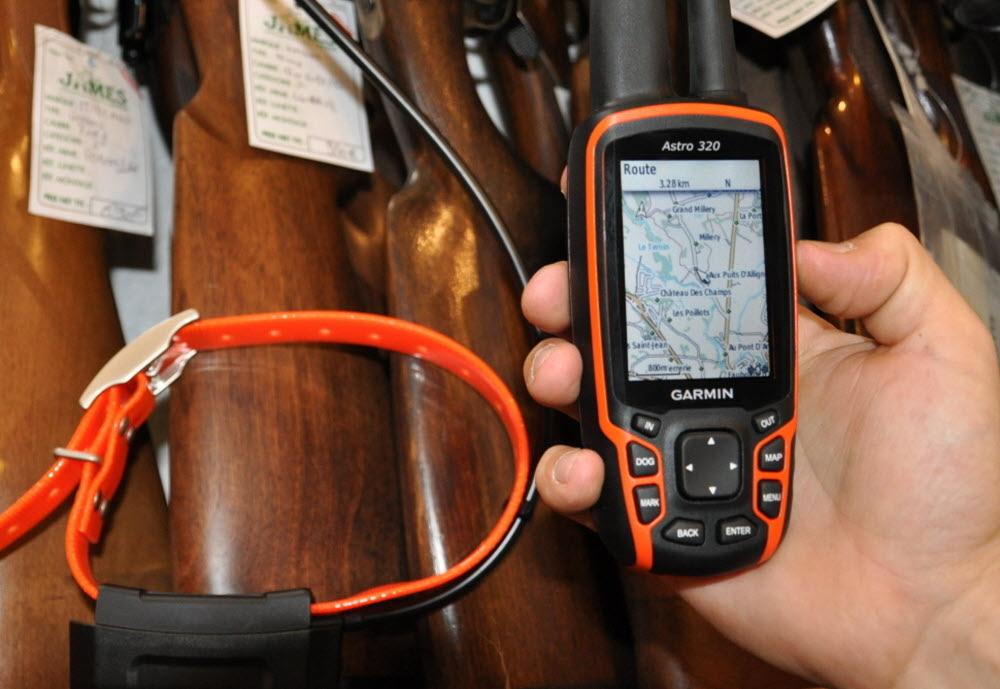 Propritaire de chien ou de chat : quel intérêt d'acheter un collier GPS ?